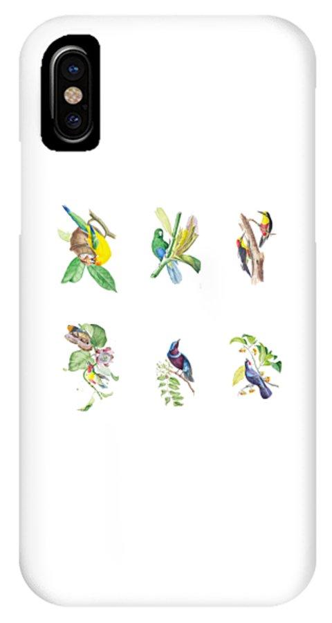 Brazil IPhone X Case featuring the painting Brazilian Tropical Birds by J T Descourtilz