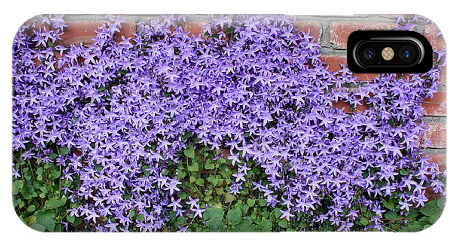 Blue Flowers IPhone X Case featuring the photograph Brick Wall With Blue Flowers by Carol Groenen