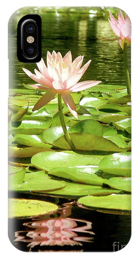 Pink Flower IPhone X Case featuring the photograph Brilliance by Amy Strong