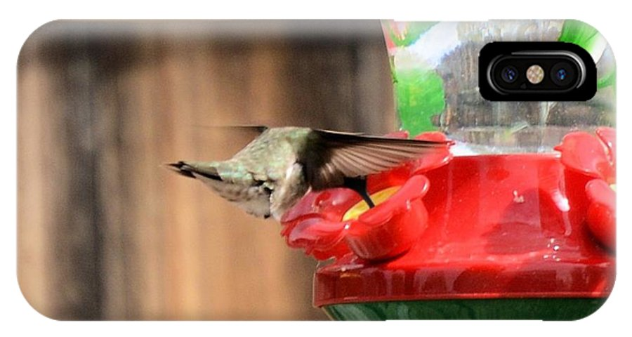 Hummingbird IPhone X Case featuring the photograph Broad-tailed Hummingbird by Wendy Fox