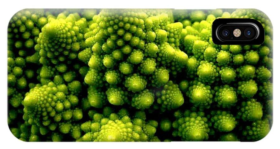 Broccoli IPhone X Case featuring the photograph Broccoli by Dragica Micki Fortuna