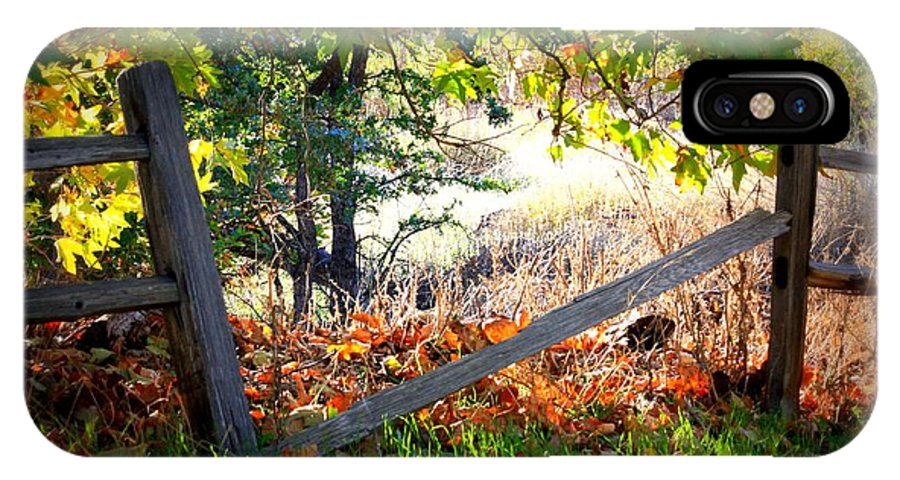 Autumn IPhone X Case featuring the photograph Broken Fence In Sycamore Park by Carol Groenen