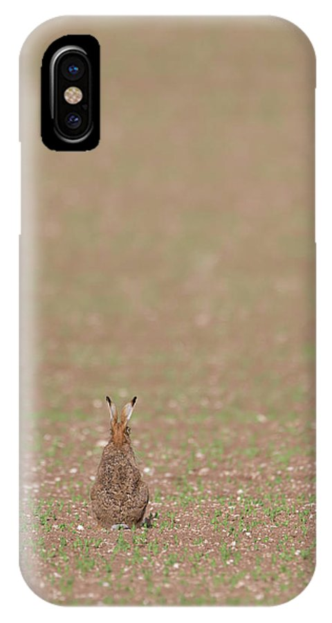 Brown IPhone X Case featuring the photograph Brown Hare, Brown Field by Peter Walkden