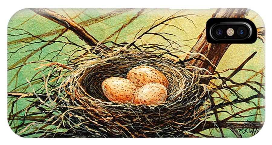 Wildlife IPhone X Case featuring the painting Brown Speckled Eggs by Frank Wilson