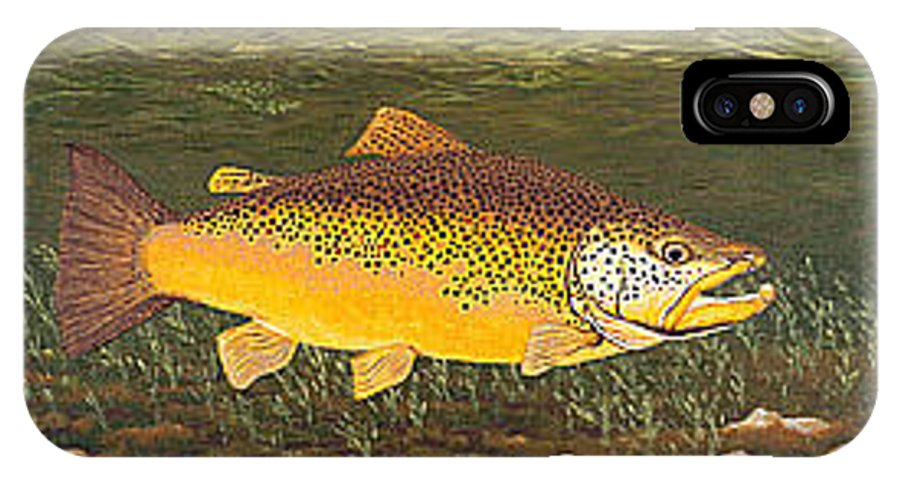 Art Print Prints Canvas Framed Giclee Fine Brown Trout Fish Angler Angling Fishing Fishermen Decor IPhone X Case featuring the painting Brown Trout Fish Art Print Touch Down Brown Trophy size Football shape Brown Trout Angler Angling by Baslee Troutman