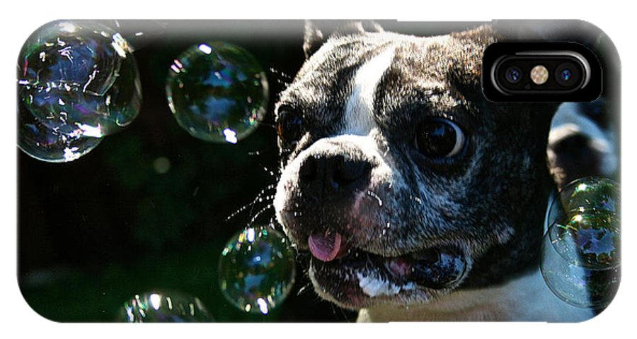 Dog IPhone X Case featuring the photograph Bubble Monster by Susan Herber