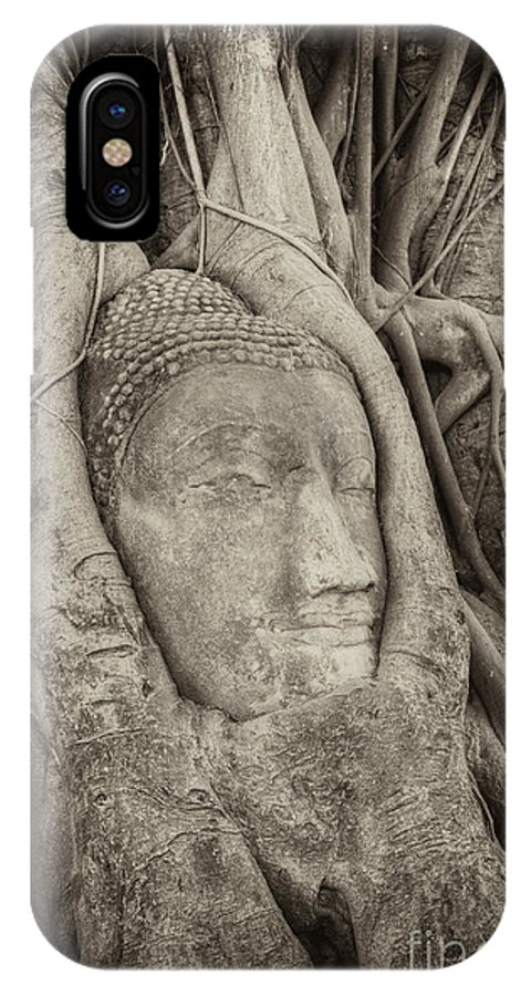 Buddha IPhone X Case featuring the photograph Buddha Head In Tree by Fototrav Print