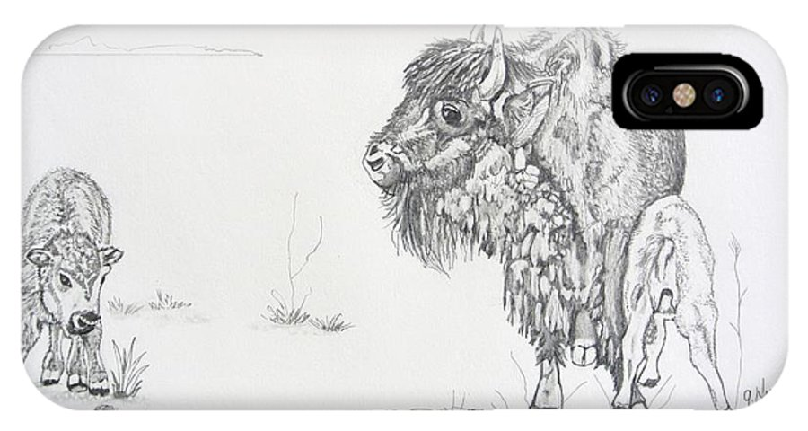 Buffalo IPhone X Case featuring the drawing Buffalo Mom And Calves by Gregory Hayes