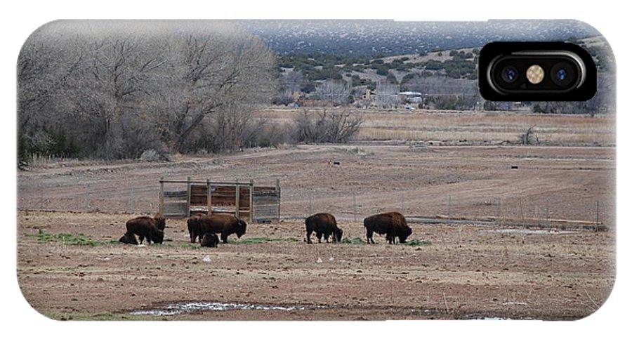 Buffalo IPhone Case featuring the photograph Buffalo New Mexico by Rob Hans