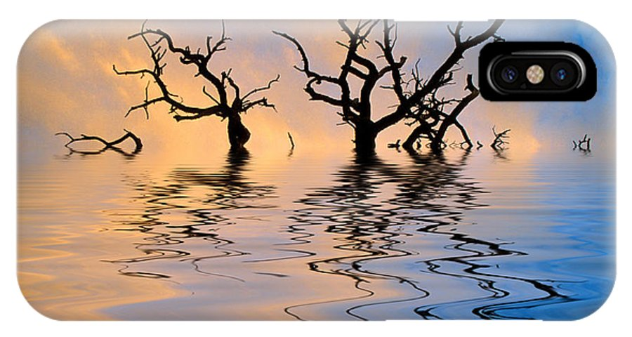 Original Art IPhone X Case featuring the photograph Slowly Sinking by Jerry McElroy