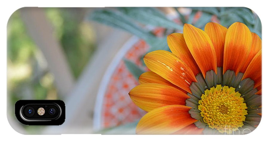 Beautiful Flower On The Porch IPhone X Case featuring the photograph Burst by Tanner Farrand