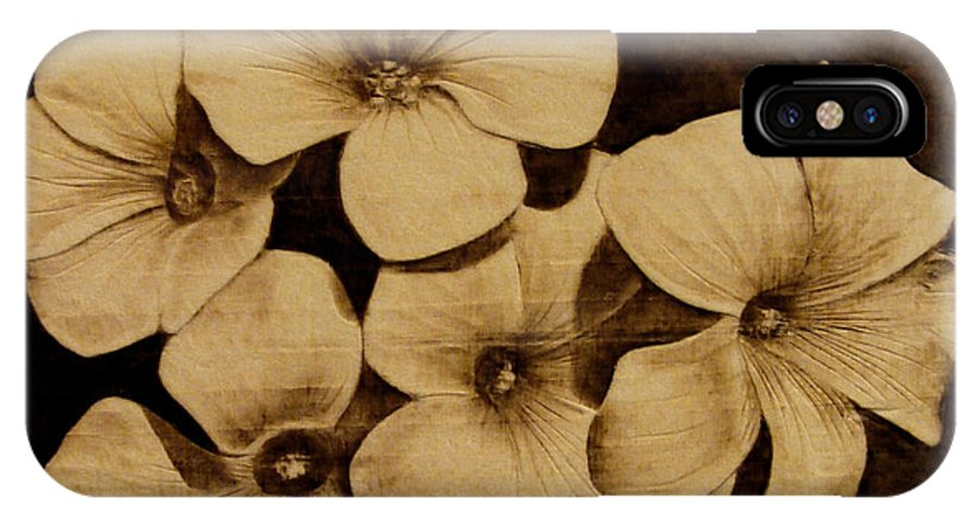 Pyrography; Sepia; Flower; Petals; Boquet; Pansy; Violet; IPhone X Case featuring the pyrography Bursting by Jo Schwartz