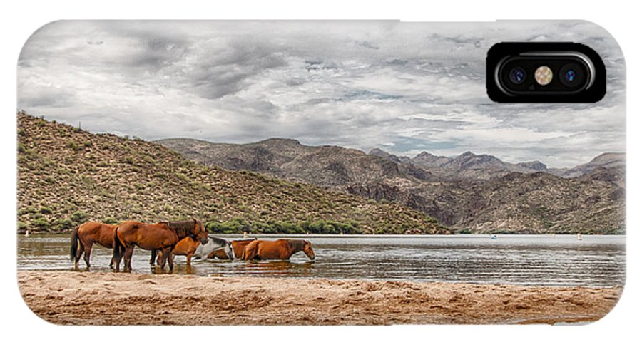 Wild IPhone X / XS Case featuring the photograph Butcher Jones Horses by Sandy Klewicki