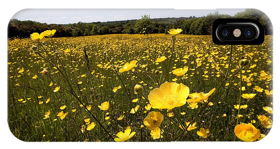 Buttercups IPhone X Case featuring the photograph Buttercup Field by Bob Kemp