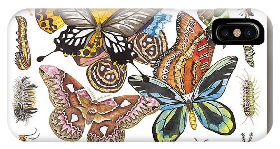 Butterflies IPhone X Case featuring the painting Butterflies Moths Caterpillars by Lucy Arnold