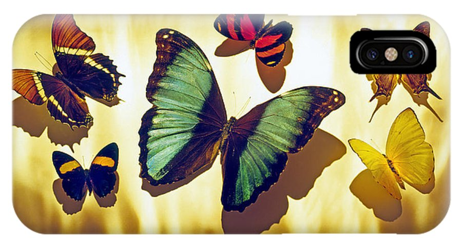 Animals IPhone X Case featuring the photograph Butterflies by Tony Cordoza