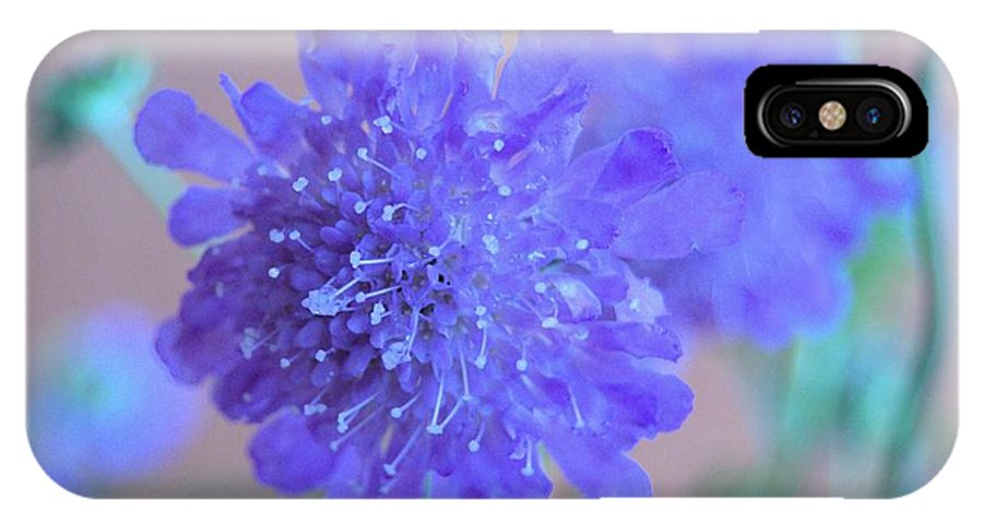 Butterfly IPhone X Case featuring the photograph Butterfly Catcher by Wendy Fox