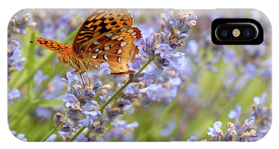 Lavender IPhone X Case featuring the photograph Butterfly Heaven by Lara Ellis