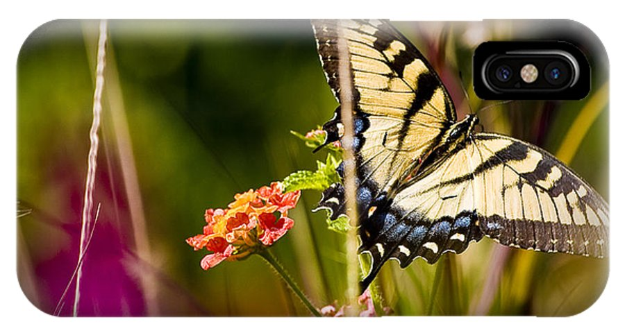 Nature IPhone X Case featuring the photograph Butterfly Jungle by Ches Black