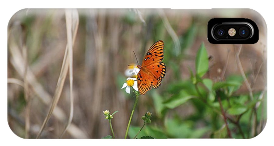 Nature IPhone Case featuring the photograph Butterfly On Flower by Rob Hans