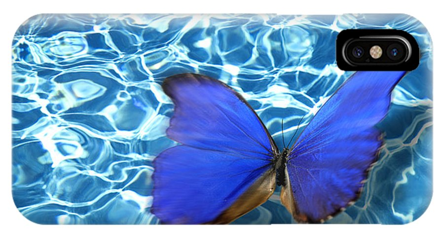 Animals IPhone X Case featuring the photograph Butterfly by Tony Cordoza