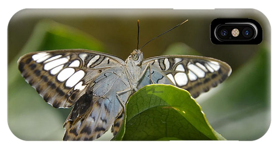Pretty IPhone X Case featuring the photograph Butterfly Watching by David Lee Thompson