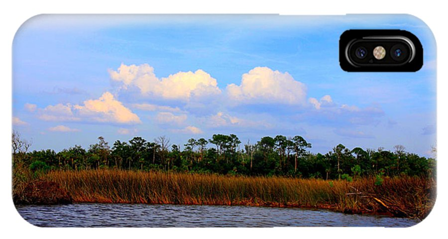 Cabbage Palms IPhone X Case featuring the photograph Cabbage Palms And Salt Marsh Grasses Of The Waccasassa Preserve by Barbara Bowen
