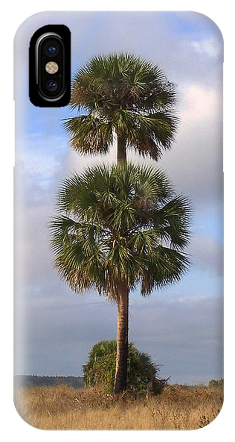 Nature IPhone X Case featuring the photograph Cabbage Palms by Peg Urban