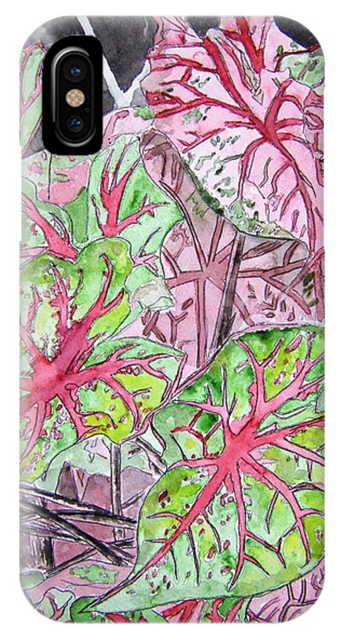 Watercolour IPhone X Case featuring the painting Caladiums Tropical Plant Art by Derek Mccrea