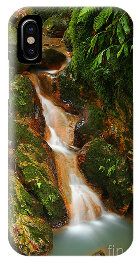 Azores IPhone X Case featuring the photograph Caldeira Velha Park by Gaspar Avila