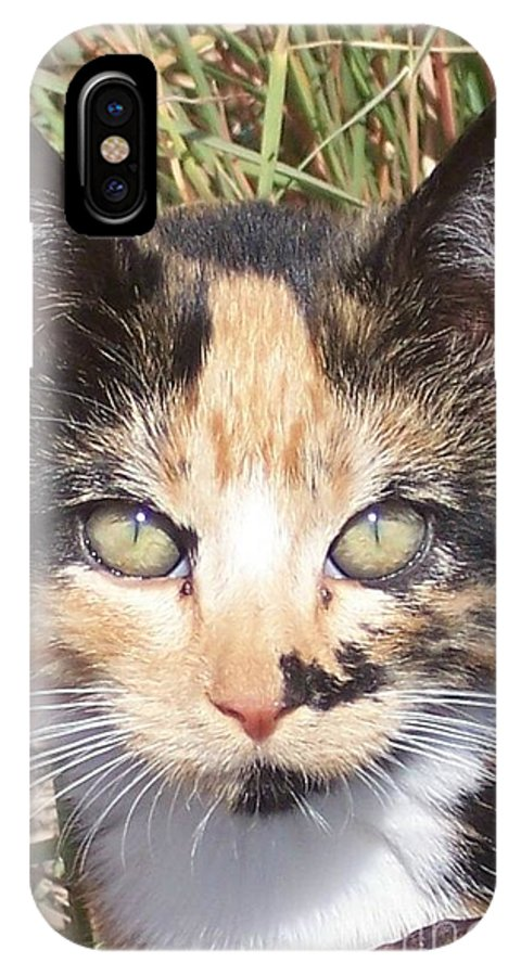 Cat IPhone X Case featuring the photograph Calico by Emily Young