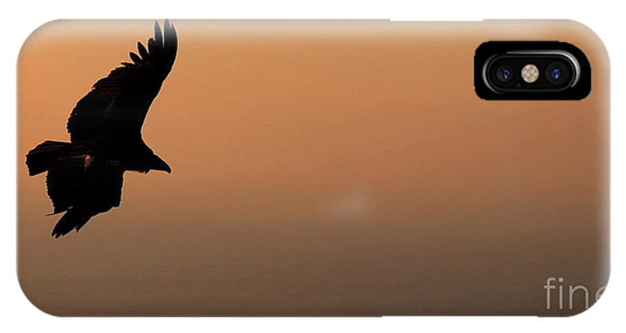 Natural IPhone X Case featuring the photograph California Condor Flying Out Of The Darkness by Max Allen