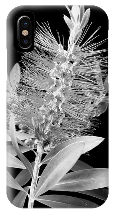 Bottlebrush IPhone X Case featuring the photograph Callistemon Beauty 4 by Kelley King
