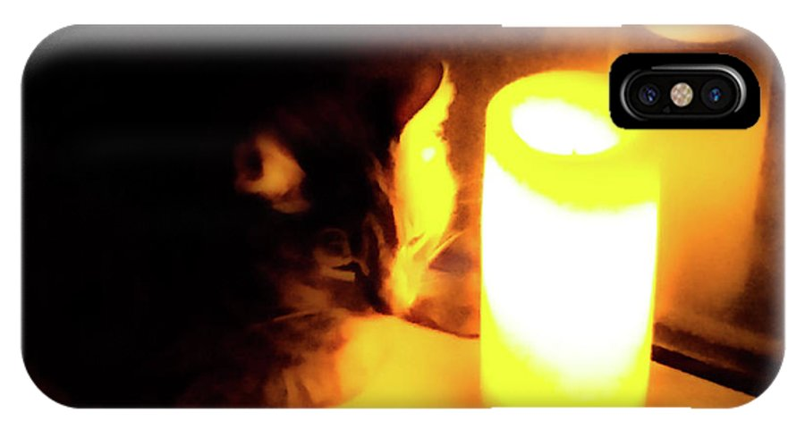Cat IPhone X Case featuring the photograph Candlelight by Lisa Quenon