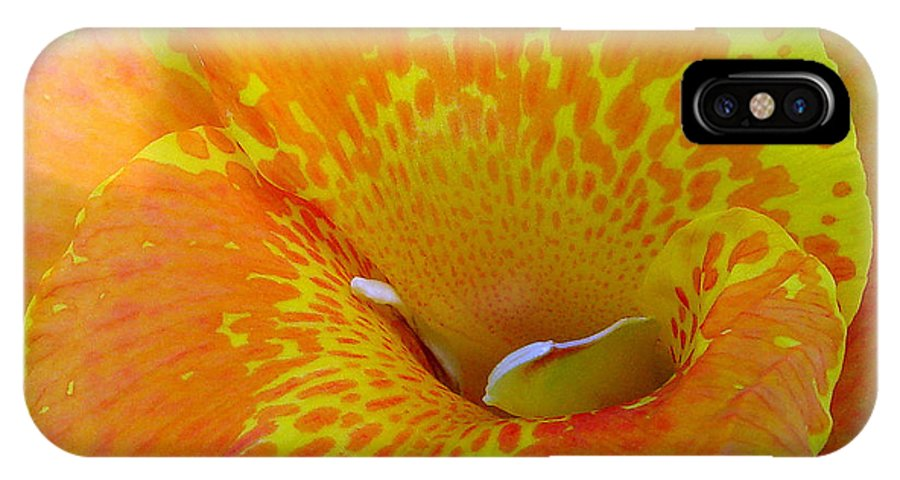 Orange Yellow Flower IPhone X Case featuring the photograph Canna by Luciana Seymour