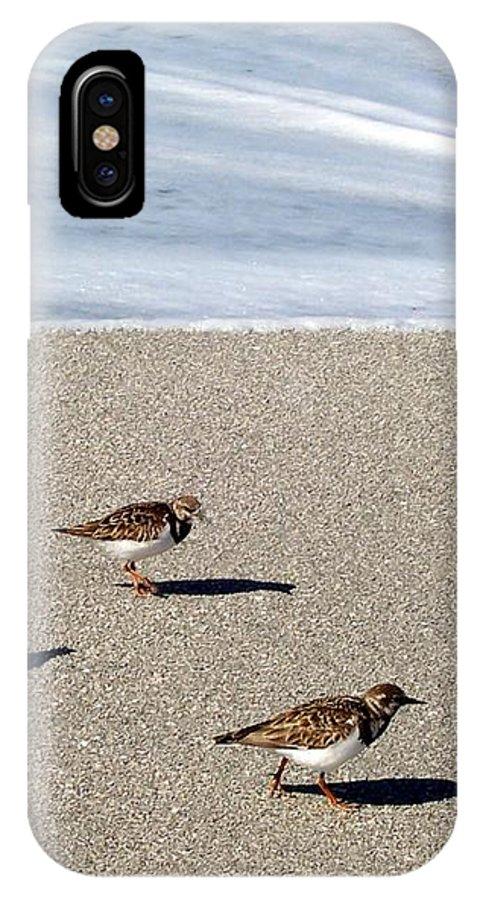 Beach IPhone X Case featuring the photograph Captiva Brids by Elizabeth Klecker