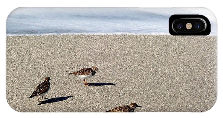 Beach IPhone Case featuring the photograph Captiva Brids by Elizabeth Klecker