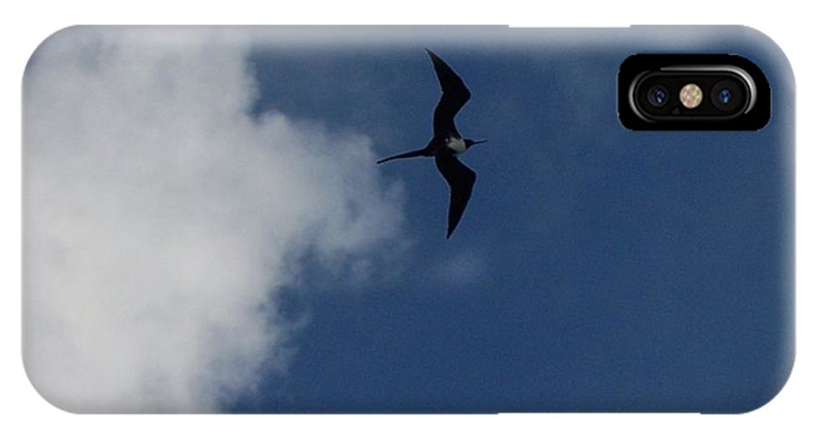 Bird IPhone X Case featuring the photograph Caribbean Sky by Michelle Miron-Rebbe