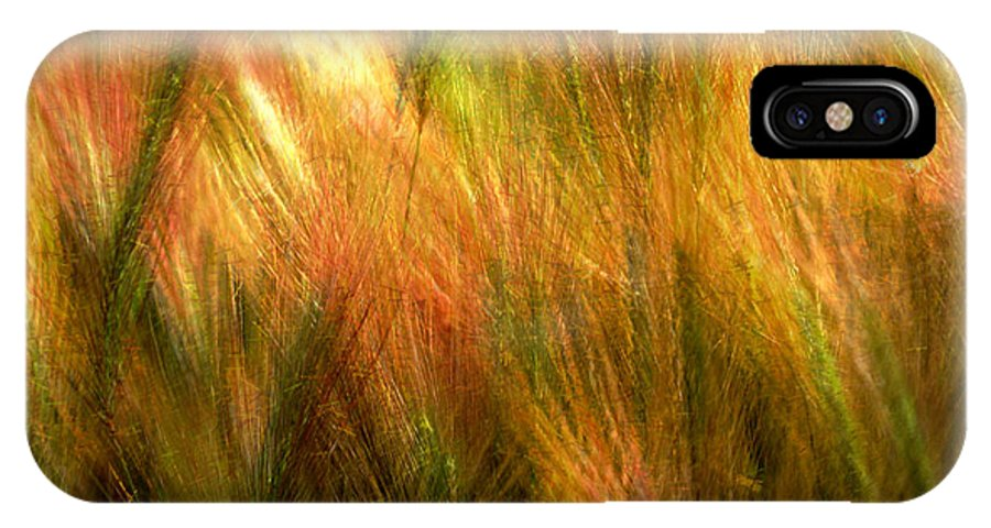 Abstract IPhone X Case featuring the photograph Cat Tails by Paul Wear