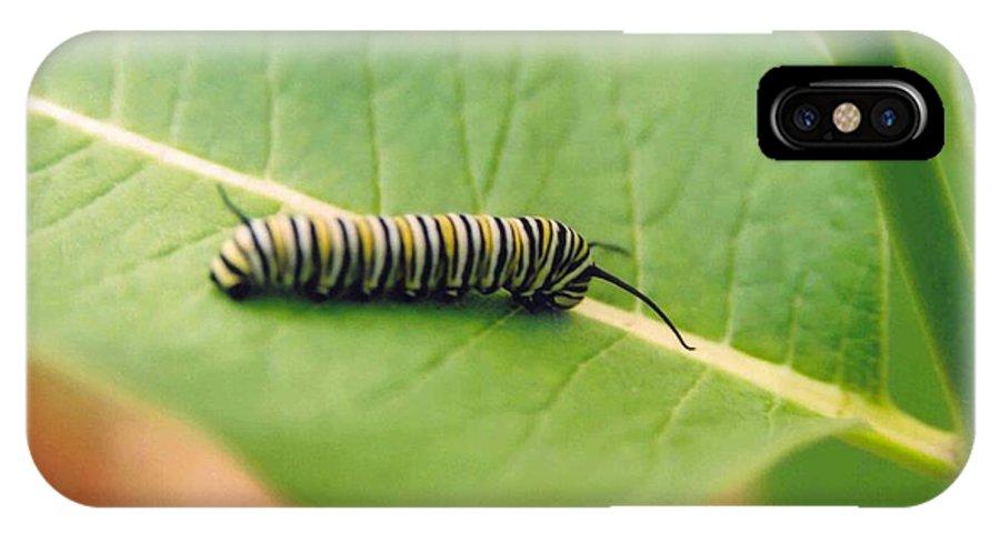Caterpillar IPhone X / XS Case featuring the photograph Caterpillar by Kathy Schumann