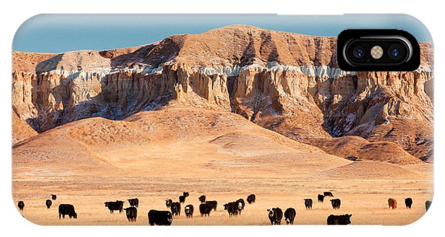 Chalk Cliffs IPhone X / XS Case featuring the photograph Chalk Cliffs by Todd Klassy