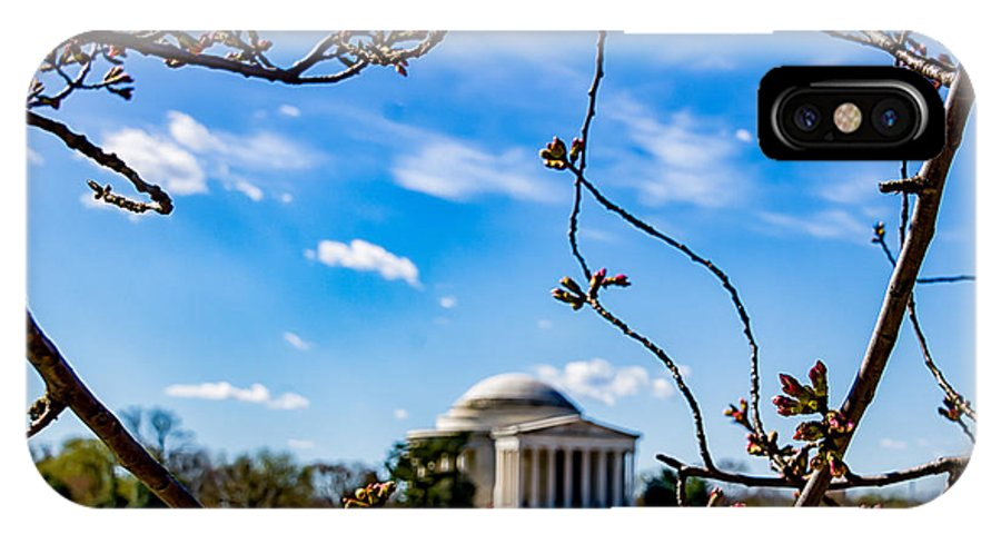 Cherry Tree IPhone X Case featuring the photograph Cherry Tree Buds by Carol Ward