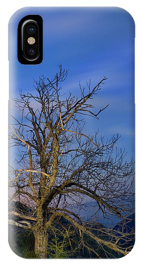 Night IPhone X Case featuring the photograph Centenary Chestnut At Blue Hour by Guido Montanes Castillo