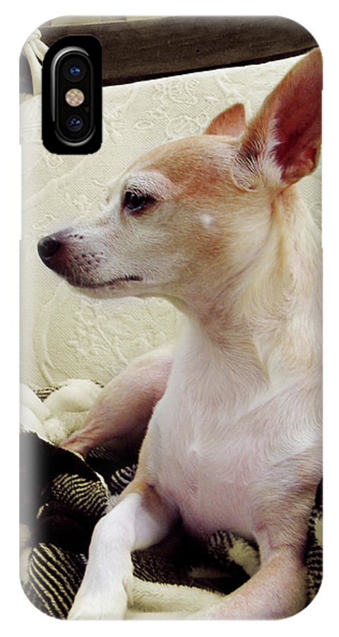 Art IPhone X Case featuring the digital art Chihuahua Chiqui Portrait 3 by Miss Pet Sitter