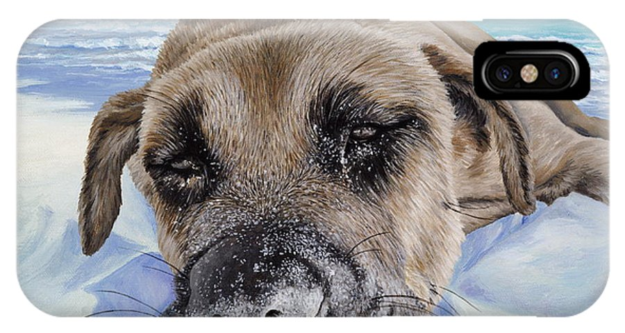Pet Portrait IPhone X Case featuring the painting Chillin In Briland by Danielle Perry