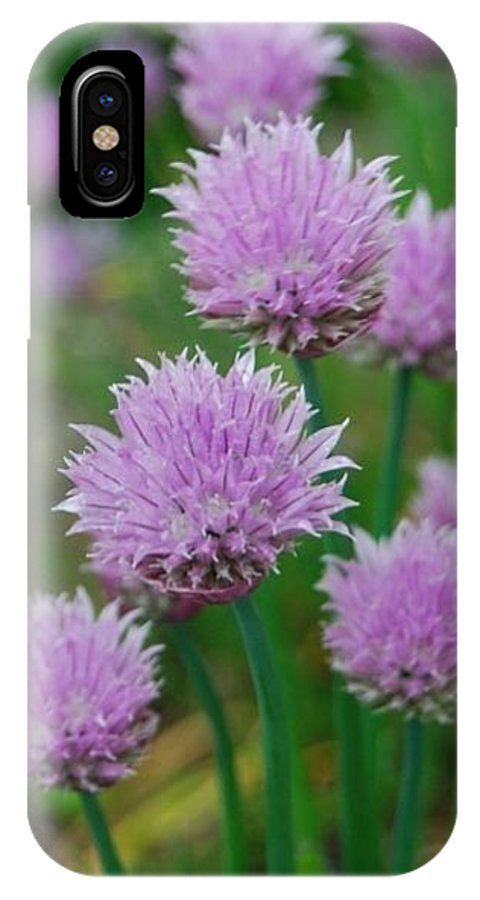 Chives IPhone X Case featuring the photograph Chives Flowers by Nancy Trevorrow