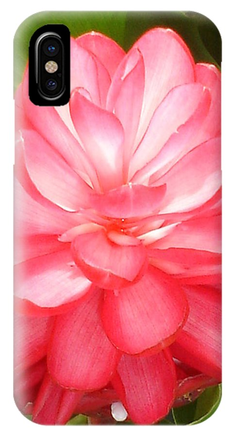 Pink Ginger Flower IPhone X Case featuring the photograph Cimi Pink Ginger Flower by Chandelle Hazen
