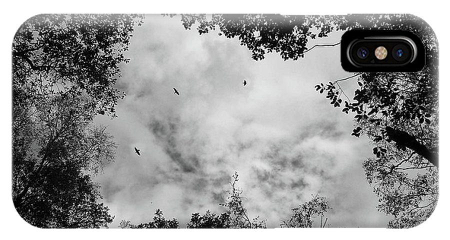 Crows IPhone X Case featuring the photograph Circling Overhead by Philip Openshaw