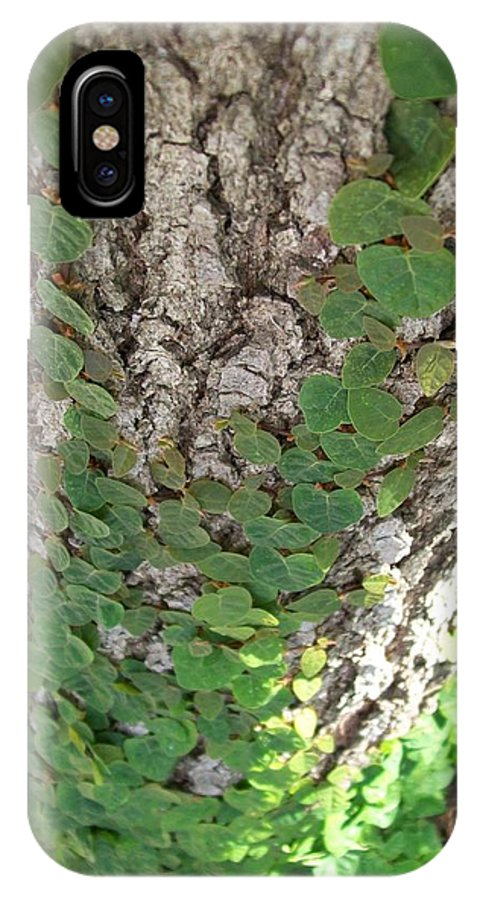 Ivy IPhone X Case featuring the photograph Climbers by Laurette Escobar
