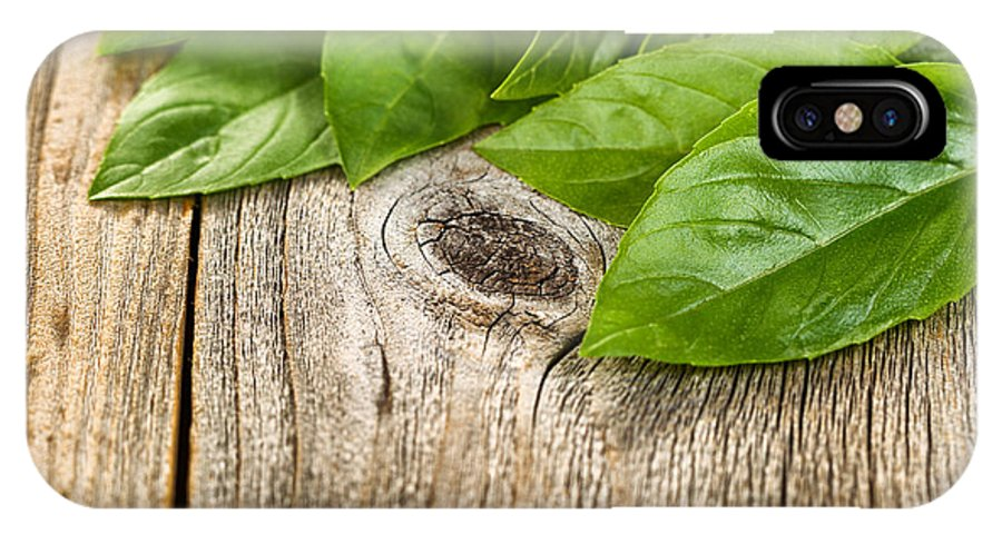 Basil IPhone X Case featuring the photograph Close Up Fresh Basil Leafs On Rustic Wooden Boards by Thomas Baker
